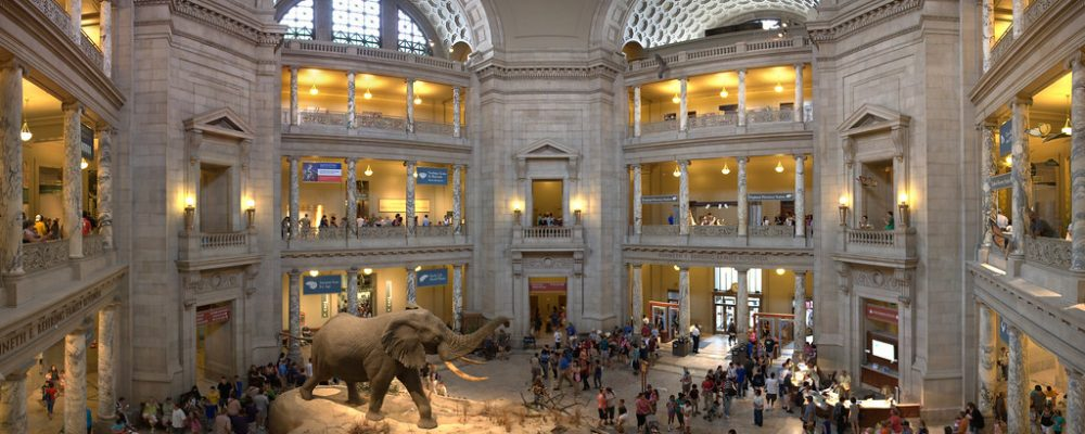 Smithsonian National Museum of Natural History – Virtual Tour
